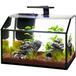 Aqueon Products - Glass - Shrimp Aquarium Kit Led - 7.5 Gallon