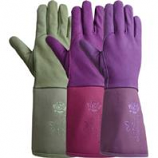 Lfs Glove P - Tuscany Women S Gauntlet Glove - Assorted - Medium