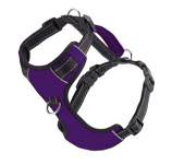 BayDog - Chesapeake Harness- Purple - X Large