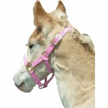 Horse And Livestock Prime - Premium Halter Chin With Snap - Pink - Weanling