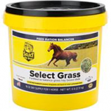 Richdel - Select Grass - 6 Lb