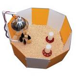 Farm Innovators - Baby Chick Starter Home - Orange/White