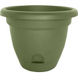 Bloem - Lucca Planter - Living Green - 6 Inch