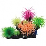 Poppy Pet - Coral Reef Formation-14X8X9