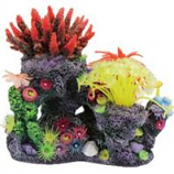 Poppy Pet - Coral Reef Formation-8X6X8