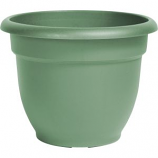 Bloem - Ariana Planter - Living Green - 10 Inch