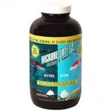 Ecological Laboratories - Microbe - Lift Sludge Away - 1 Quart