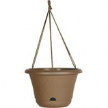 Bloem - Lucca Hanging Basket - Chocolate - 13 Inch