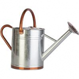 Panacea  - Galvenized Watering Can-Galvanized-2 Gallon