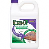 Bonide Products - Kleenup 41% Weed & Grass Killer Concentrate--1 Gallon