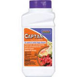 Bonide Products - Captan Fruit Ornamental Fungicide Concentrate--8 Ounce