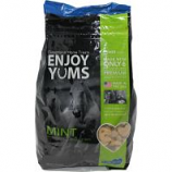 A Little Pet Vet - Horse Enjoy Yums - Mint - 5 Lb