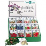 Page Seed - Page'S Premium Hummingbird Counter Display - 250 Pc
