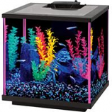 Aqueon Products - Glass-Aqueon Neoglow Aquarium Kit Cube-Pink-7.5 Gallon