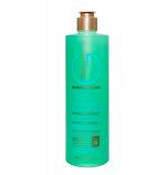 Therapy-G - Antioxidant Shampoo For Chemically Treated Hair - 350ml 12oz