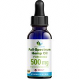 Green Coast Pet - Full-Spectrum Hemp Oil For Dogs - 500Mg/ 1 Oz