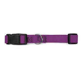 Guardian Gear - Adj Collar Brites - 14-20x3/4Inch - Purple