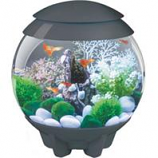 Oase - Aquatics - Biorb Halo 15 Mcr Aquarium-Gray-4 Gal/15 Liter