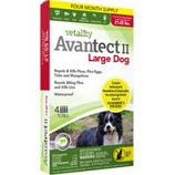 Tevra Brands - Vetality Avantect Ii For Dogs - Large 21-35Lbs