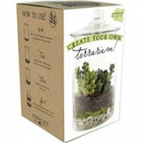 Syndicate Sales - Diy Terrarium Kit