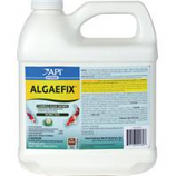 Mars Fishcare Pond - Pondcare Algaefix - 64 Ounce