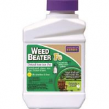 Bonide Products - Weedbeater Fe Lawn Weed Killer Concentrate - Pint