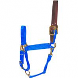 Hamilton Halter Company-Halter With Leather Weanling-Blue-200/300