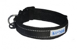 BayDog - Tampa Collar- Black - X Large