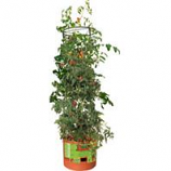 Hydrofarm Products - Tomato Barrel With Tower