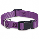 Guardian Gear - Adj Collar Brites - 18-26x1Inch - Purple