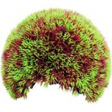 Poppy Pet - Moss Cave Hideout-Red/Green-8 Inch